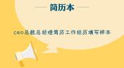 ceo总裁总经理简历工作经历填写样本