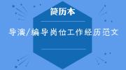 导演/编导岗位工作经历范文