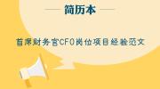 首席财务官CFO岗位项目经验范文