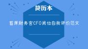 首席财务官CFO岗位自我评价范文