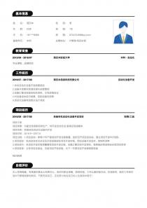 IT管理/项目协调word简历模板
