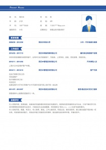 销售业务/保险/银行简历模板
