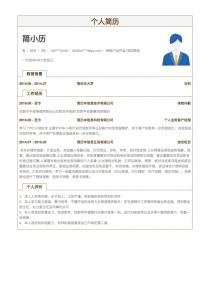 保险产品开发/项目策划空白简历表格