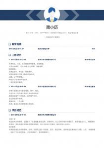 网店/淘宝运营简历模板下载word格式