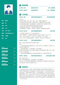 IT-管理電子版word簡歷模板