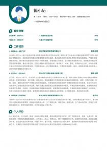 首席财务官/CFO简历模板