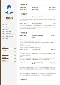 物流/仓储/采购/IT-管理简历模板
