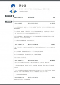 财务/审计/税务工作简历