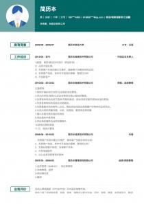 中国区总负责人简历模板