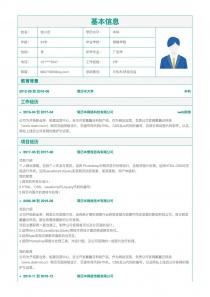 IT技术/研发总监简历模板下载