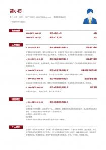 首席財務官CFO免費簡歷模板