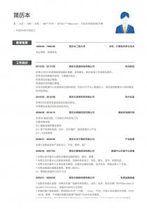 IT技术/研发经理/主管简历模板下载word格式