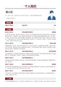 房地产项目策划经理/主管招聘word简历模板