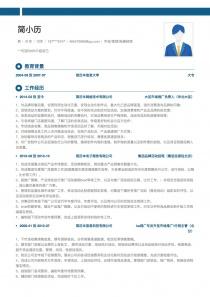 市場/營銷/拓展經理電子版簡歷模板下載
